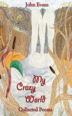 my crazy world cover v2