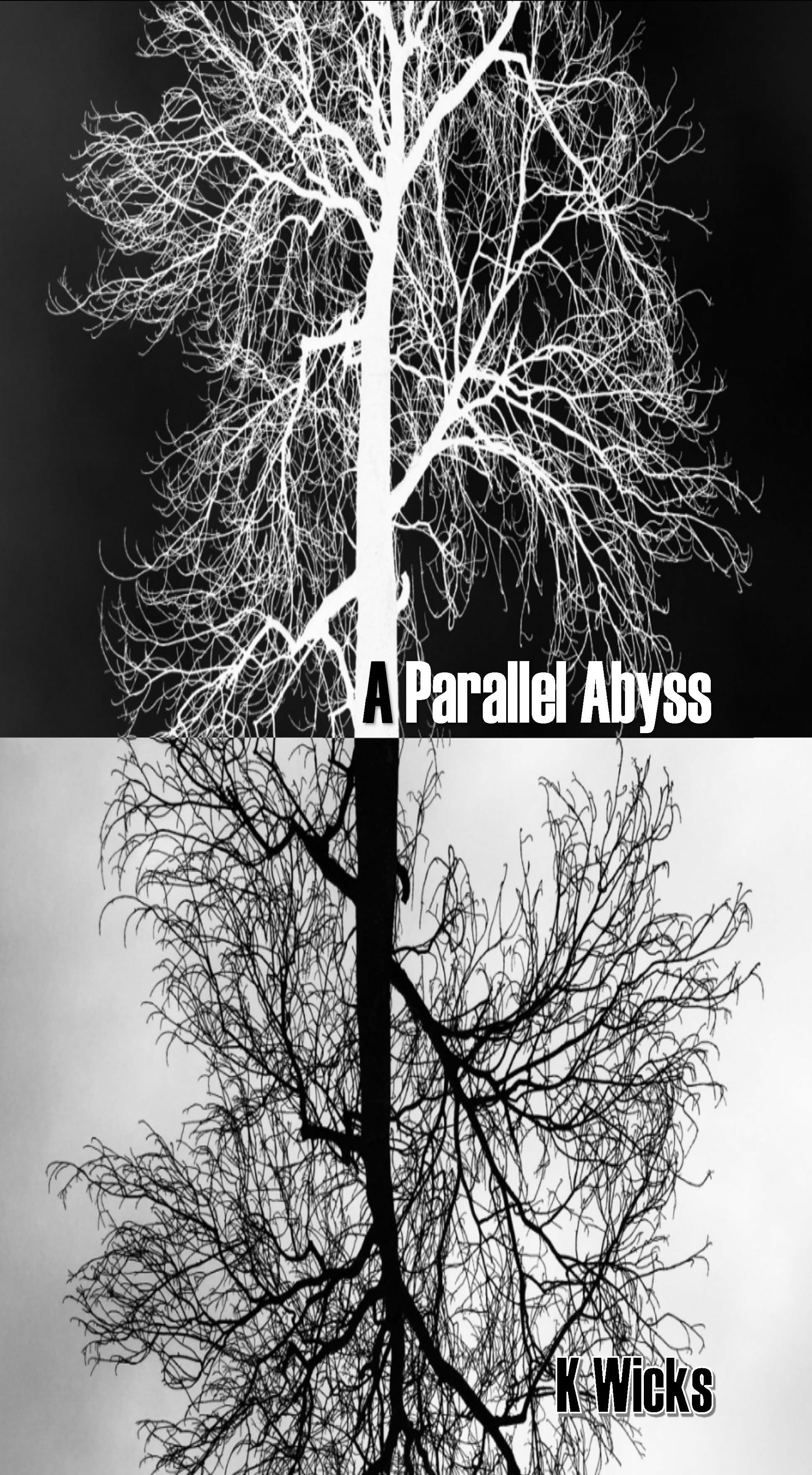A Parallel Abyss Cover front only