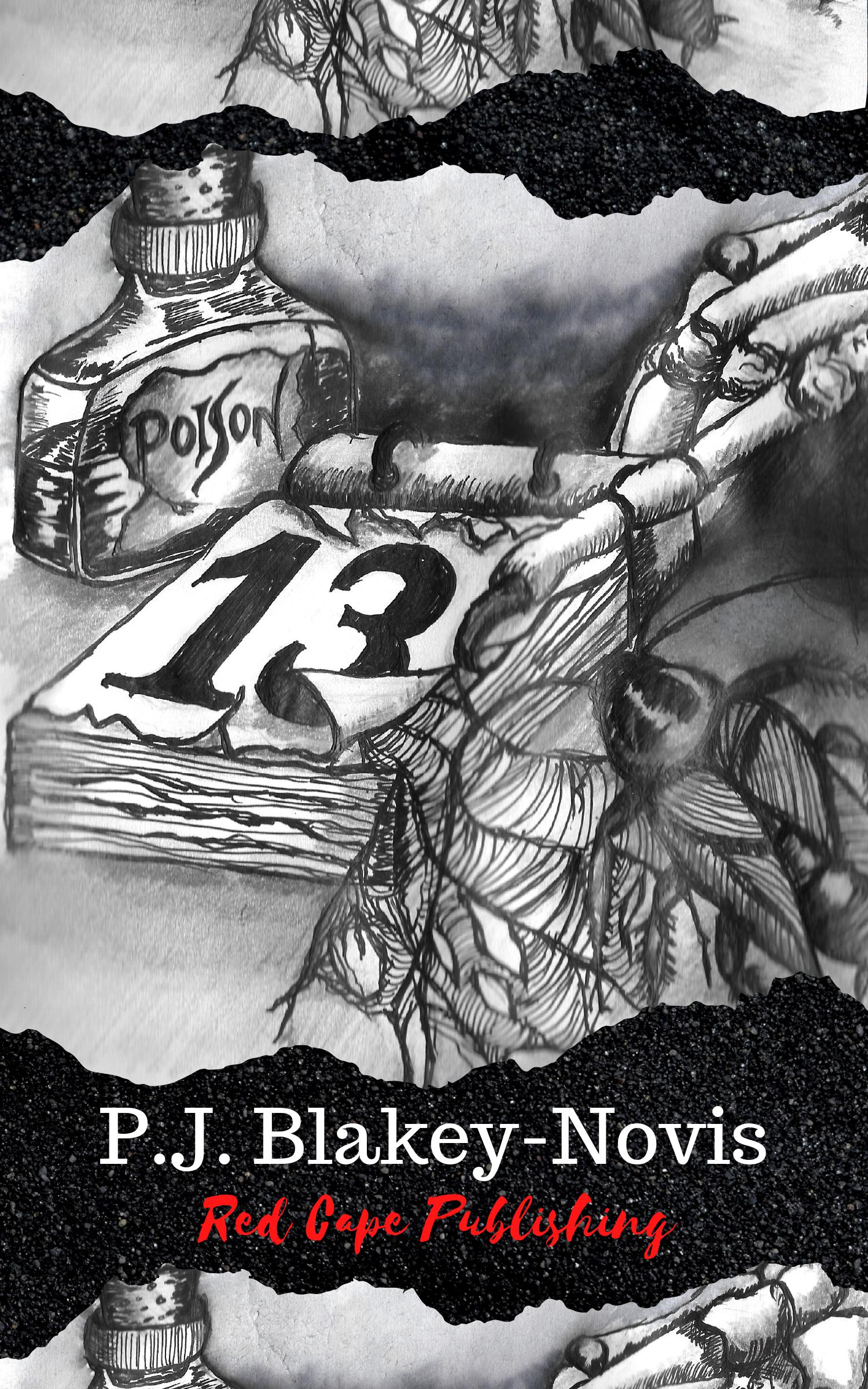13 Cover